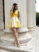 GOLD WING DRESS